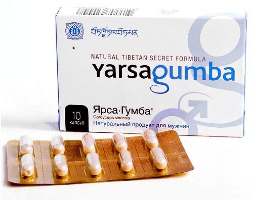 Ярсагумба тибетский препарат для потенции. ОРИГИНАЛ
